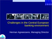 Challenges_in_the_Central_European_banking_environment