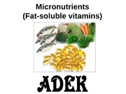 30. Micronutrients_3