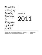 Feasibility report for Leasing Company.doc