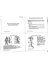 Electrical stimulation of the neuromuscular system notes