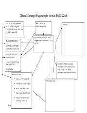 Clinical Concept Map 3.doc
