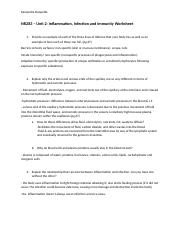 Inflammation, Infection and Immunity Worksheet.docx