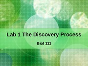 Lab%201%20The%20Discovery%20Process%208.29.2011
