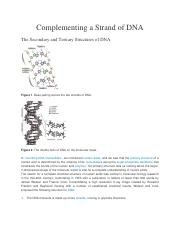 Problem 3-Complementing a Strand of DNA.pdf