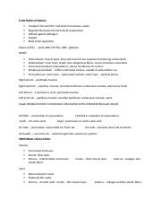 Exam 4 review sheet!.docx