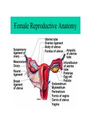 Female Reproductive Physiology.pdf