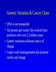 Genetic Variation _ Cancer Clues
