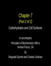 chapter 7b' carbohydrates a.ppt