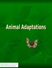 animal-adaptations-i-1225375199133788-8.ppt