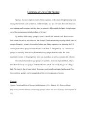 Sponge essay cus why not.pdf