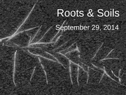 Sept 29 - Roots and Soils (2)