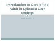 adult 2 episodic care notes
