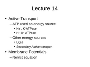 Lecture 14 Active Transport then Membrane Potentials