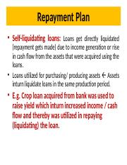 Self-liquidating loan