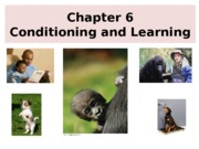 14th Edition Chapter 6- Conditioning-.pptx