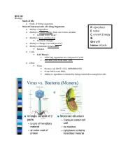 Biology notes1.docx