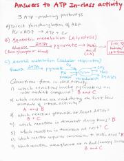 9- Answers to ATP inclass activity.pdf