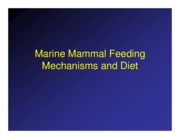 06 - Feeding Mechanisms and foraging tactics