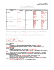 Bio 1A General Biology: Spring 2015 Cellular Respiration Worksheet Answers
