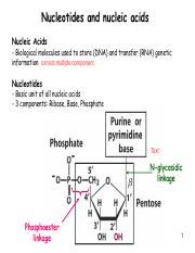 Nucleotides and nucleic acids.pdf