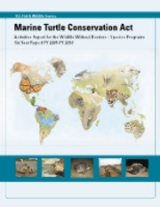 MarineTurtleReport2011