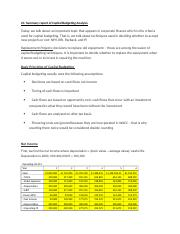 Capital Budgeting project summary