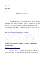 american goverment essay .pdf