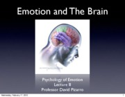 Emotion Lecture 8 2010 Emotion and The Brain