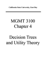MGMT 3100 Decision Theory Review