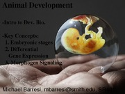 Animal_Development_BIO150Lecture_04-14_pres_2