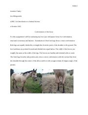 Conformation of the horse.docx