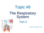ANP 1105 The respiratory system,  Part 3  2011 JK
