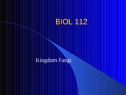 b112_Lecture_31