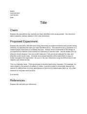 3A Essay Template(1).doc