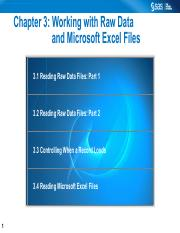 Working with Raw Data and Microsoft Excel Files.pdf