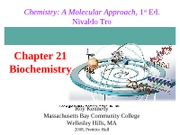 Chapter21_LEC