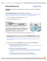 sbi4u photosynthesis lab gizmo Explore robert watts's board cellular respiration - sbi4u on pinterest | see more ideas about biology lessons, ap biology and physical science.