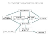 THE STRUCTURE OF FINANCIAL FORECASTING AND ANALYSIS