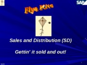 Flya Kite SD