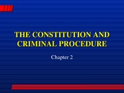 The Constitution Lecture Slides
