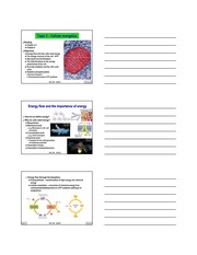 Topic 3 - Cellular energetics 2013
