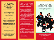 NJCLD Transition brochure 2007