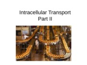 Ch 15 Intracellular Transport II