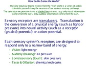 Topic 6  Coding of Sensory Information