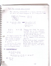 LIN 2 -matrix inverse notes