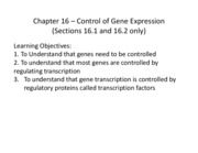 "Chapter 16 â€"" Control of Gene Expression 2011"