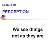 Perception_notes_1