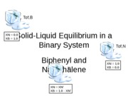 Solid-Liquid Equilibrium in a Binary System