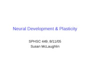 PART1Neural Development & Plasticity
