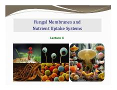 PLP130_L4_+Membranes+and+Nutrient+uptake